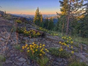 Junction Peak, Idaho